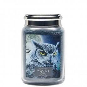 VC Grande jarre wizard's owl