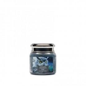 VC Mini jarre wizard's owl