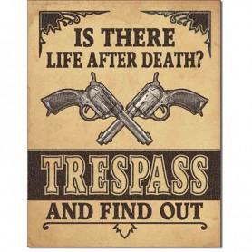 Life after death ?