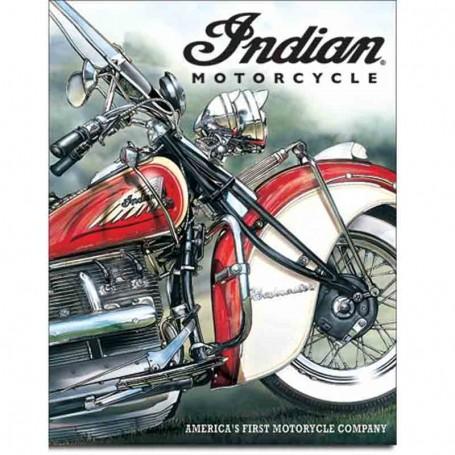 Indian america