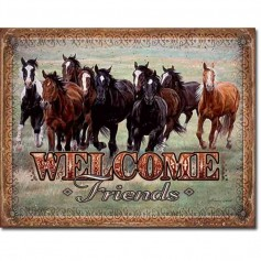 Welcome friends horses